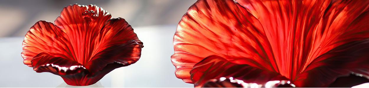Аксессуары Hibiscus