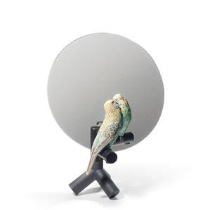 """Зеркало настольное """"Попугай"""" 37 x 27см"""
