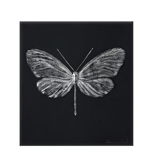 """Декоративная панель """"Стрекоза - черный, платиновый"""" 42см"""