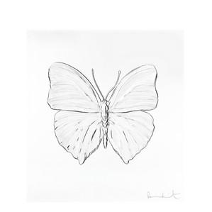 """Декоративная панель """"Бабочка"""" 42см"""
