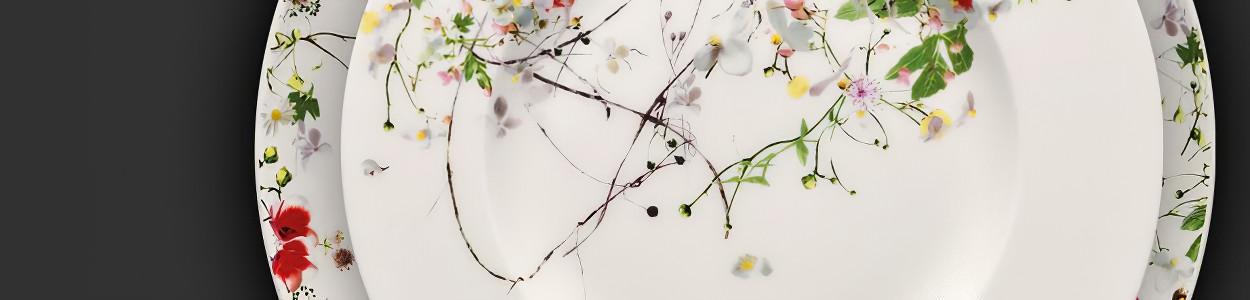Brillance Fleurs Sauvages